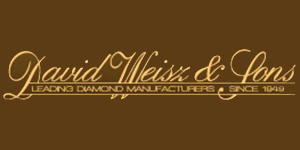 David Weisz & Sons Logo
