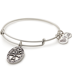 Alex and Ani BECAUSE I LOVE YOU, FRIEND II, EWB