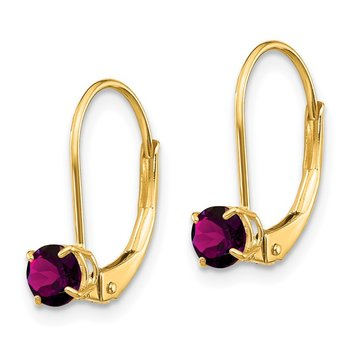 14k 4mm Round June/Rhodolite Leverback Earrings