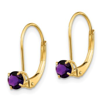 14k Amethyst Earrings - February
