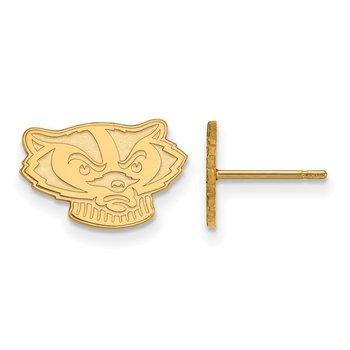 Gold University of Wisconsin NCAA Earrings