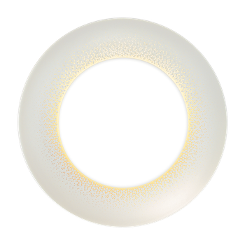 Moonlight grey lge dinner plate
