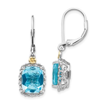 Sterling Silver w/14k Blue Topaz Earrings