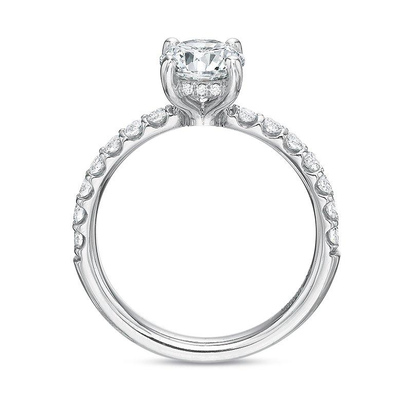 haltom u0026 39 s fine jewelers  precision set 6352
