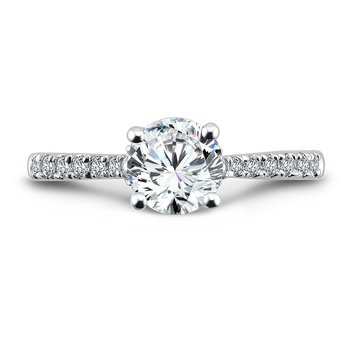 Engagement Ring With Side Stones in 14K White Gold (1ct. tw.)