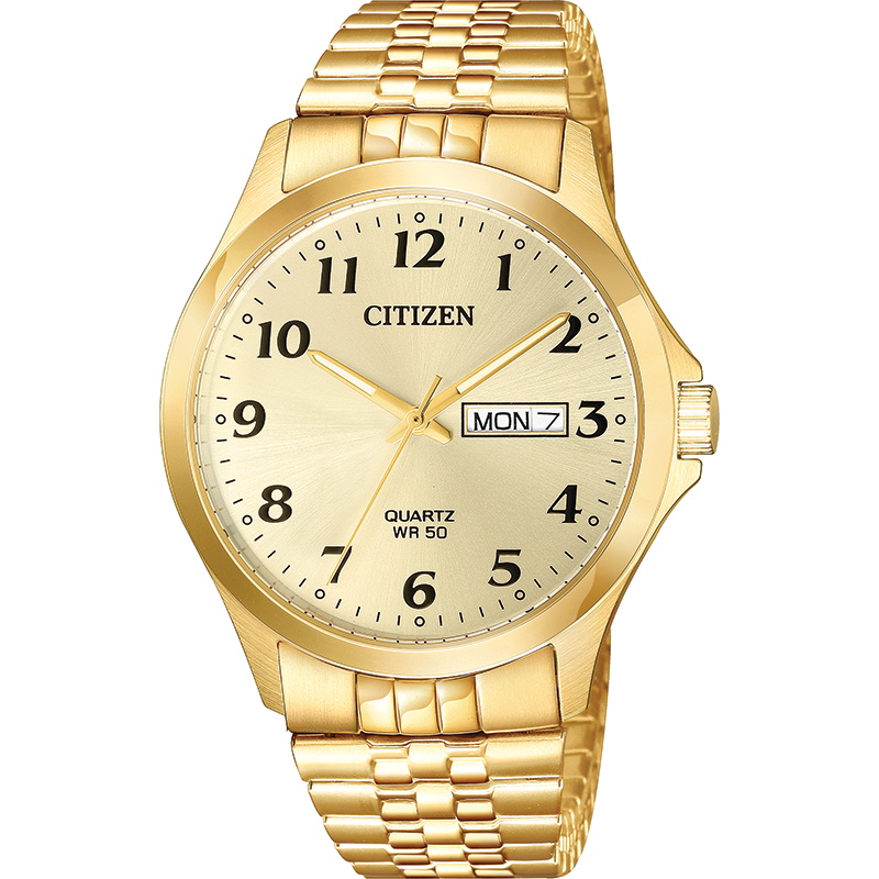 Citizen BF5002-99P