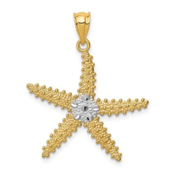14K w/Rhodium Polished & Textured D/C Starfish Pendant