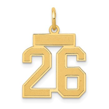 14k Small Satin Number 26 Charm