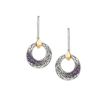 Comet Round Hook Earrings