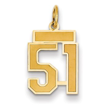 14k Small Satin Number 51 Charm