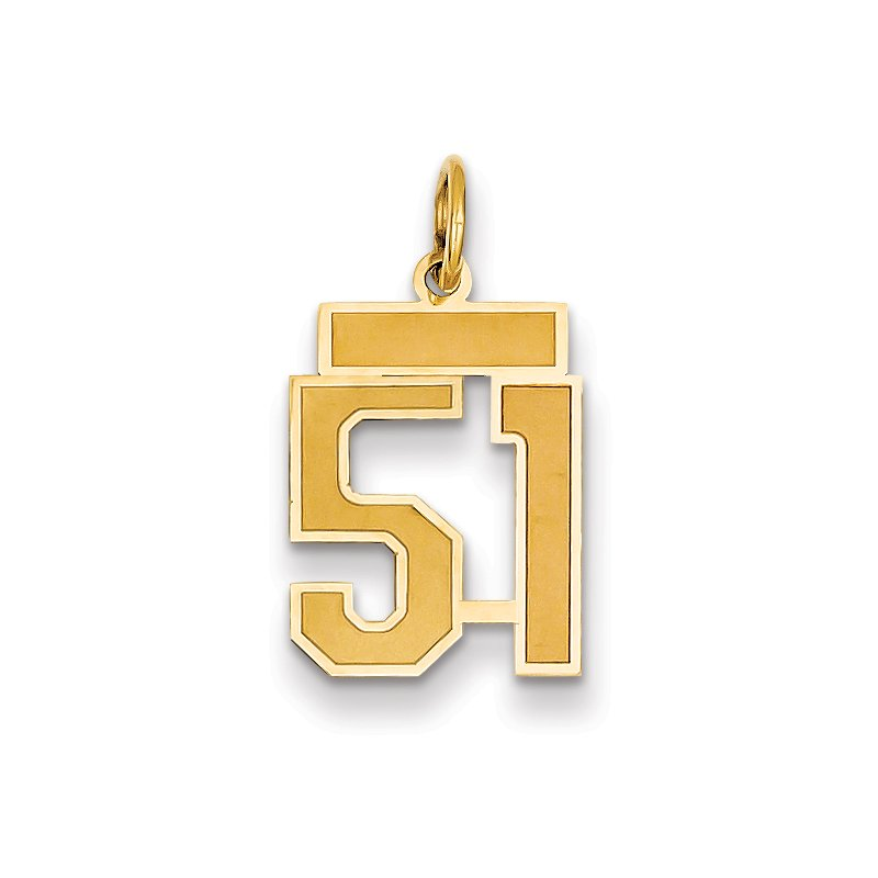 Quality Gold 14k Small Satin Number 51 Charm