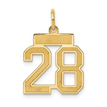14k Small Satin Number 28 Charm