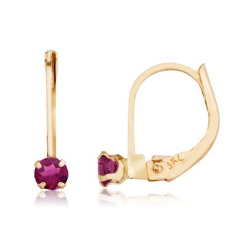 14k Petite Rhodolite Garnet Leverback Earrings
