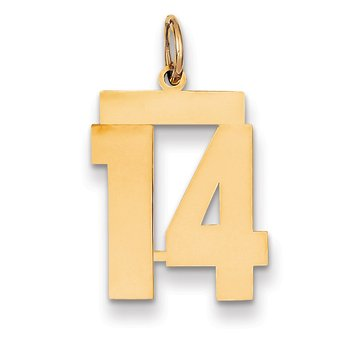 14k Medium Polished Number 14 Charm