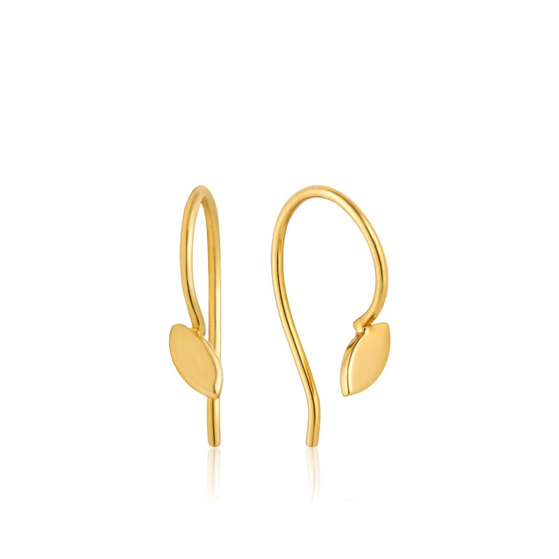 Ania Haie Hook Earrings