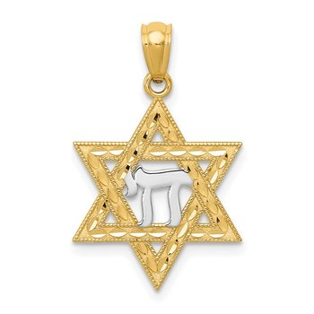 14k w/Rhodium Star of David w/Chai Pendant