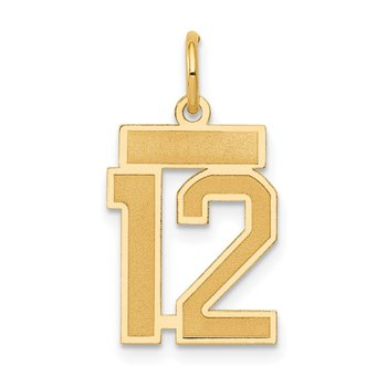 14k Small Satin Number 12 Charm