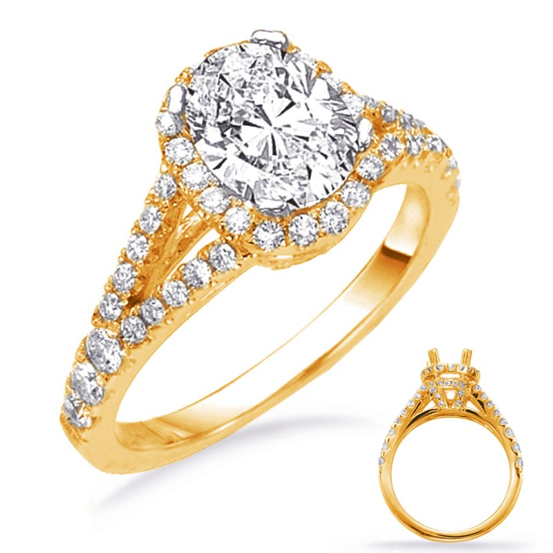 S. Kashi & Sons Bridal Yellow Gold Pave Engagement Ring
