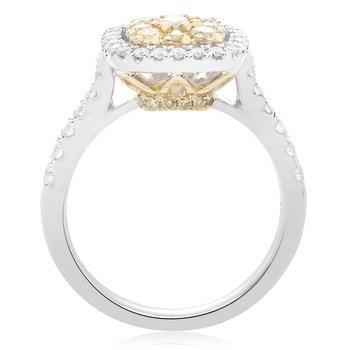 Pave Shank Diamond Cluster Ring