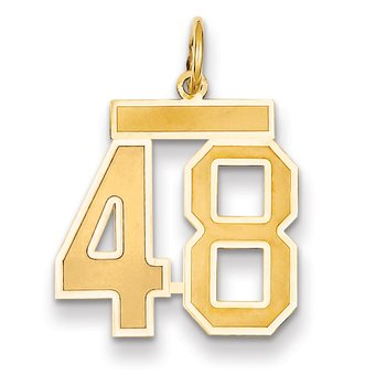 14k Medium Satin Number 48 Charm
