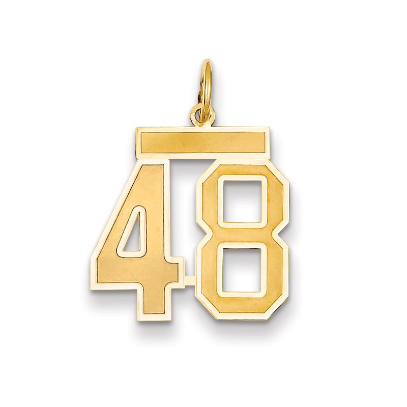 Quality Gold 14k Medium Satin Number 48 Charm