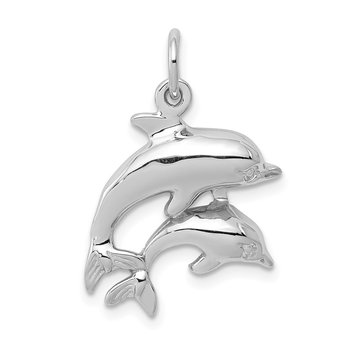 14k White Gold Dolphin Charm