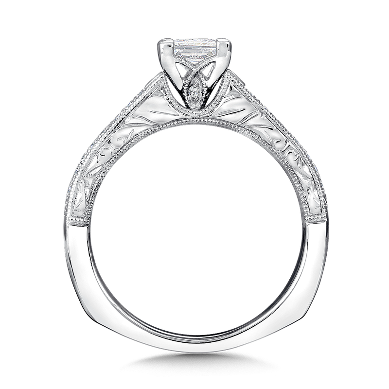 Valina Mounting with side stones .29 ct. tw., 3/4 ct. Princess cut center.