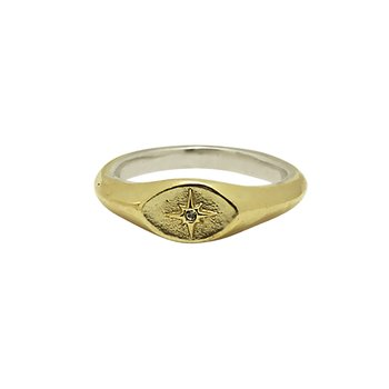 Inner Compass Mini Signet Ring