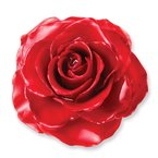 Quality Gold Lacquer Dipped Red Rose Adjustable Silver-tone Ring