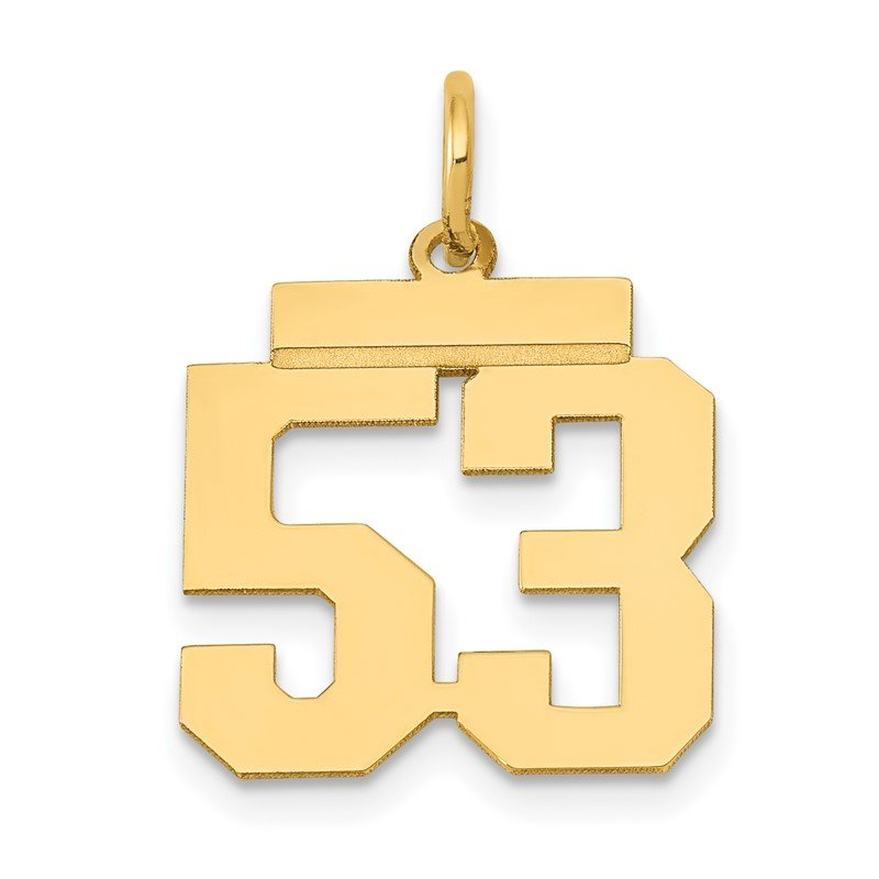 Quality Gold 14k Small Polished Number 53 Charm