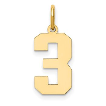 14k Medium Polished Number 3 Charm