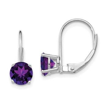14k White Gold 6mm Amethyst Leverback Earrings
