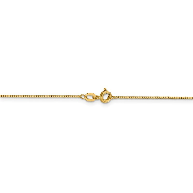 Leslie's Leslie's 14K .8mm Box with Spring Ring Clasp Chain
