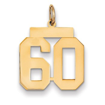 14k Medium Polished Number 60 Charm