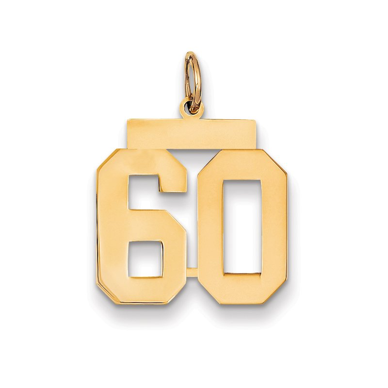 Quality Gold 14k Medium Polished Number 60 Charm