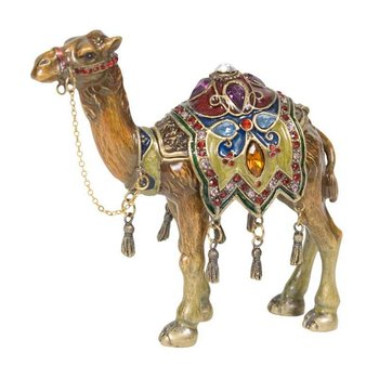 Prince of the Desert Camel