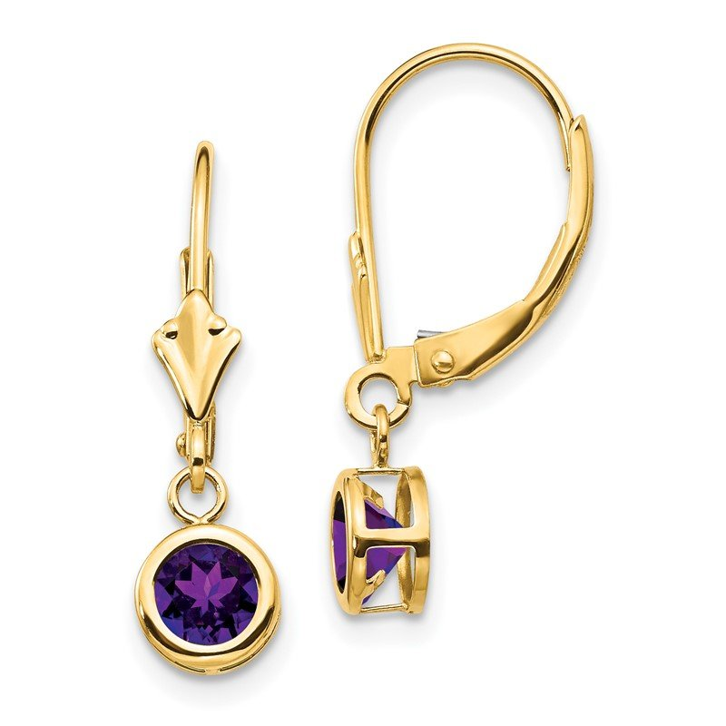 Quality Gold 14k 5mm Amethyst Leverback Earring