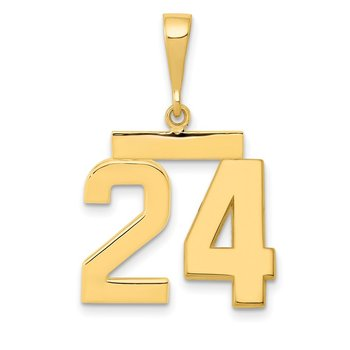 14k Medium Polished Number 24 Charm