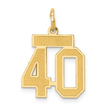 14k Small Satin Number 40 Charm