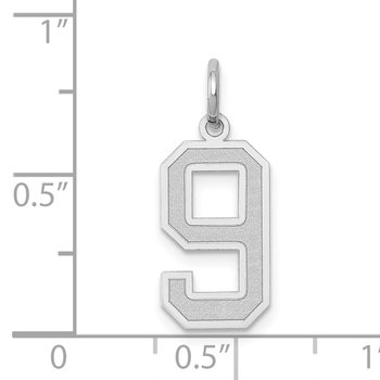 14k White Gold Medium Satin Number 9 Charm