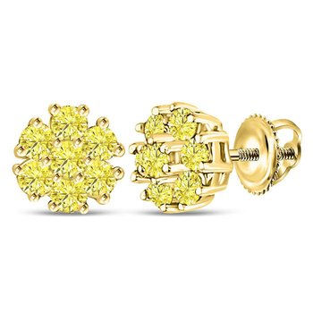 10kt Yellow Gold Womens Round Yellow Color Enhanced Diamond Cluster Earrings 1/4 Cttw
