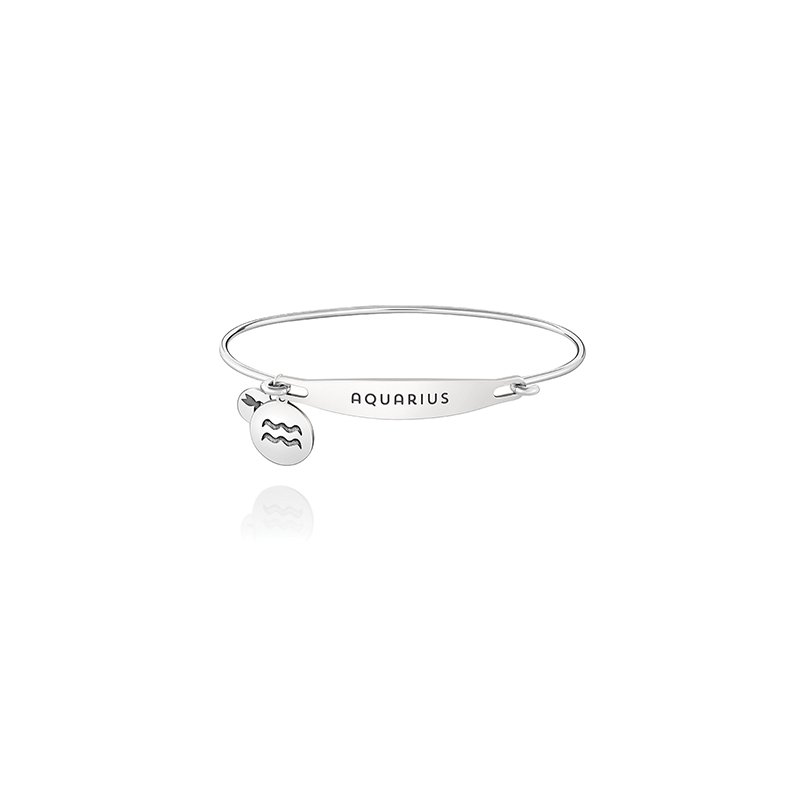 Chamilia Zodiac: Aquarius ID Bangle