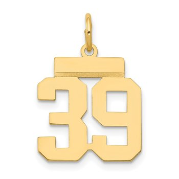 14k Small Polished Number 39 Charm