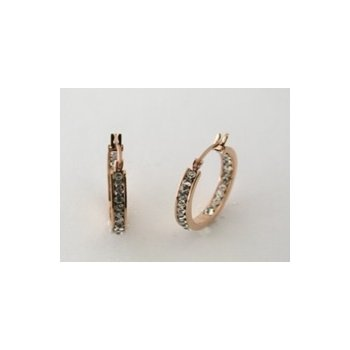 14E0150 Earrings