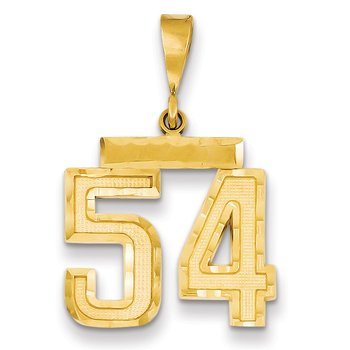 14k Medium Diamond-cut Number 54 Charm
