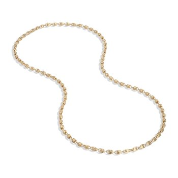 Lucia Long  Small Link Chain Necklace