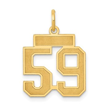 14k Small Satin Number 59 Charm