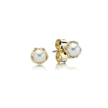 Cultured Elegance Stud Earrings, Pearl & 14K Gold