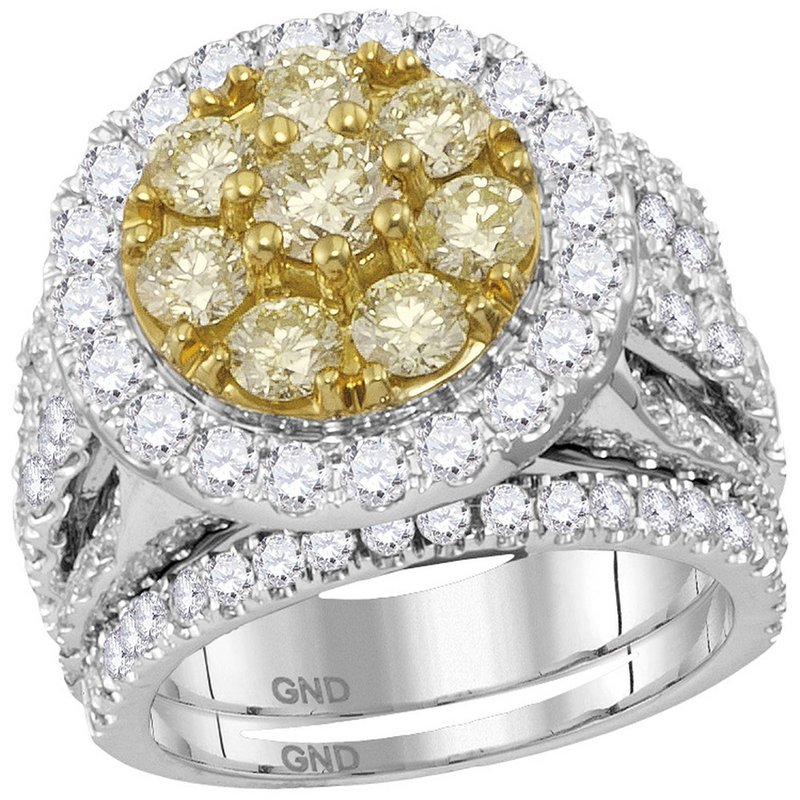 Gold-N-Diamonds, Inc. (Atlanta) 14kt White Gold Womens Round Yellow Diamond Halo Bridal Wedding Engagement Ring Band Set 4.00 Cttw