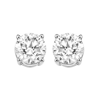 Diamond Stud Earrings in 14K White Gold (1/4 ct. tw.) I2/I3 - H/K